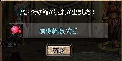 e0081790_20354451.jpg
