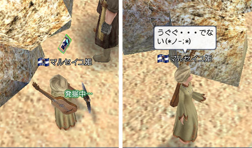 b0072412_20101124.jpg