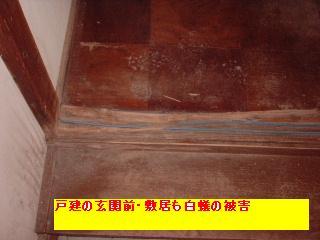 f0031037_2351239.jpg