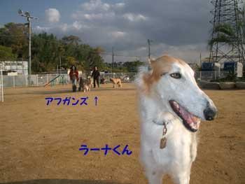b0090938_1839097.jpg