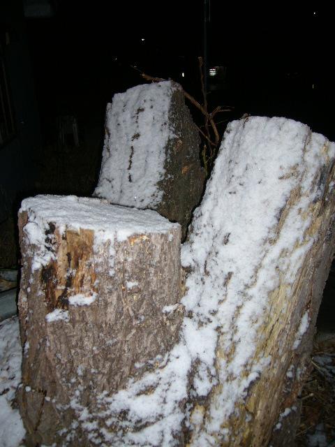 夜と雪と切り株と_c0062295_2221550.jpg