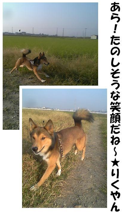 d0032004_20103043.jpg