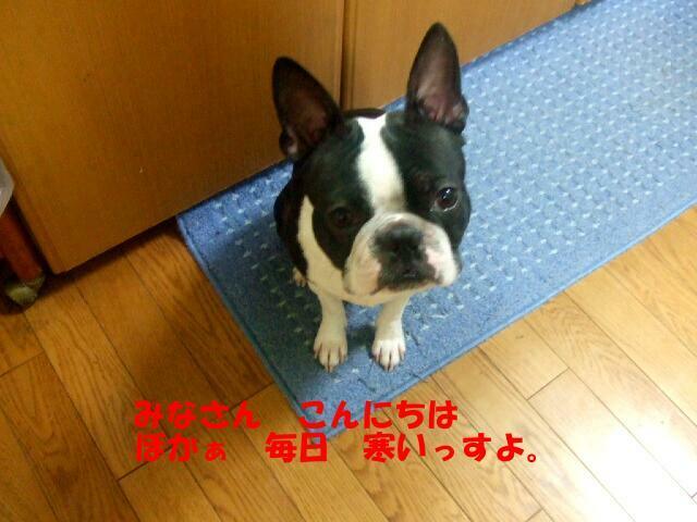 f0059334_9102066.jpg