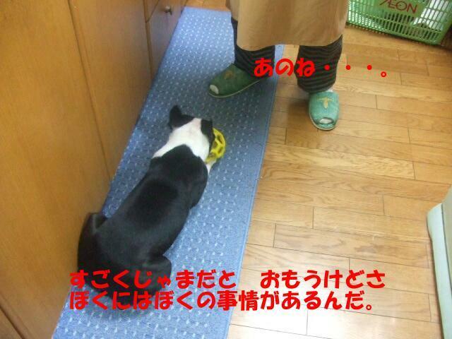 f0059334_9121958.jpg