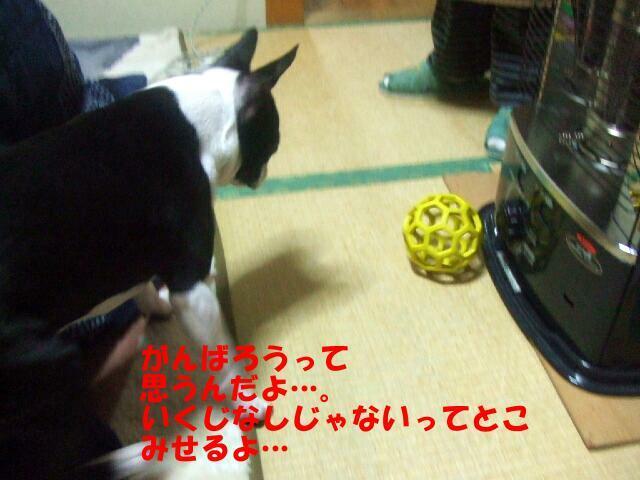 f0059334_9222641.jpg