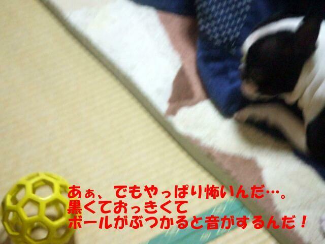f0059334_9231530.jpg