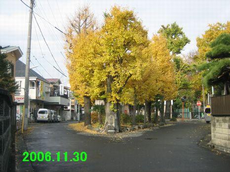 f0002750_22114795.jpg
