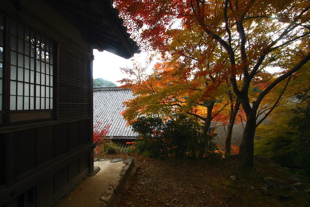 京都 高尾 <西明寺> 紅葉 3_f0021869_2034686.jpg