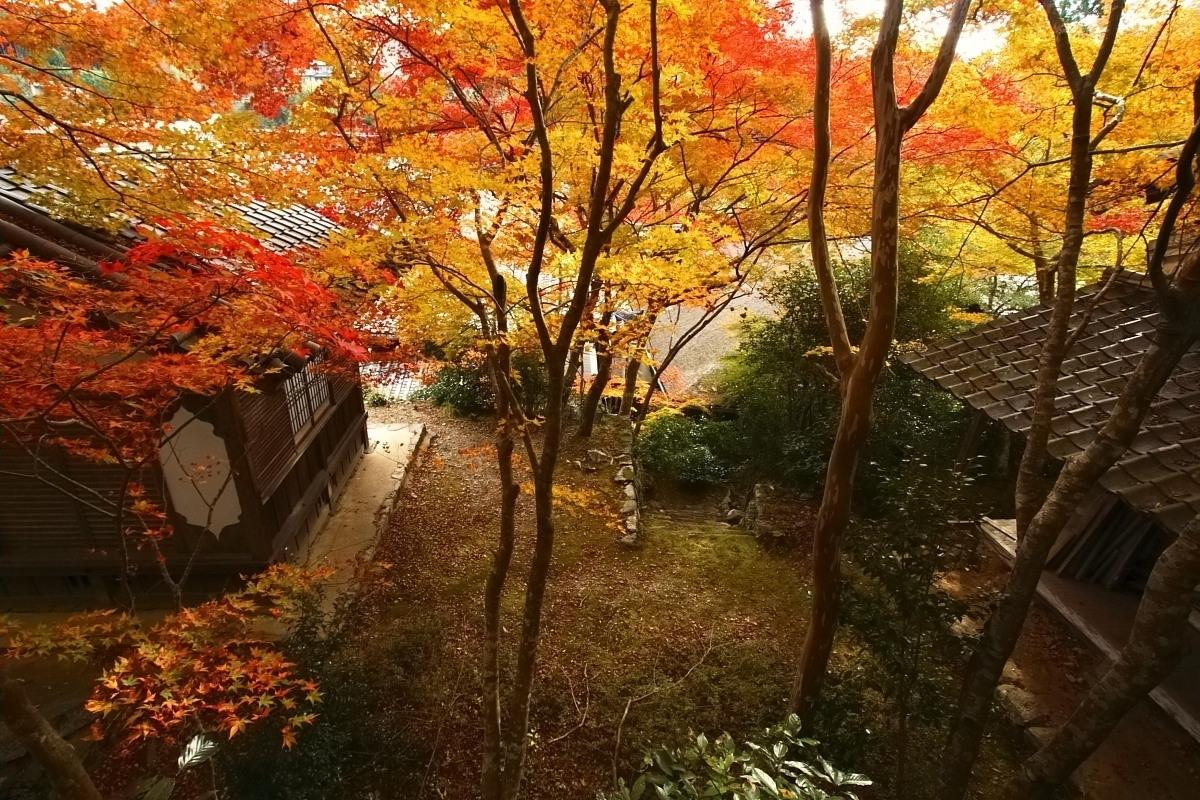 京都 高尾 <西明寺> 紅葉 3_f0021869_2036475.jpg