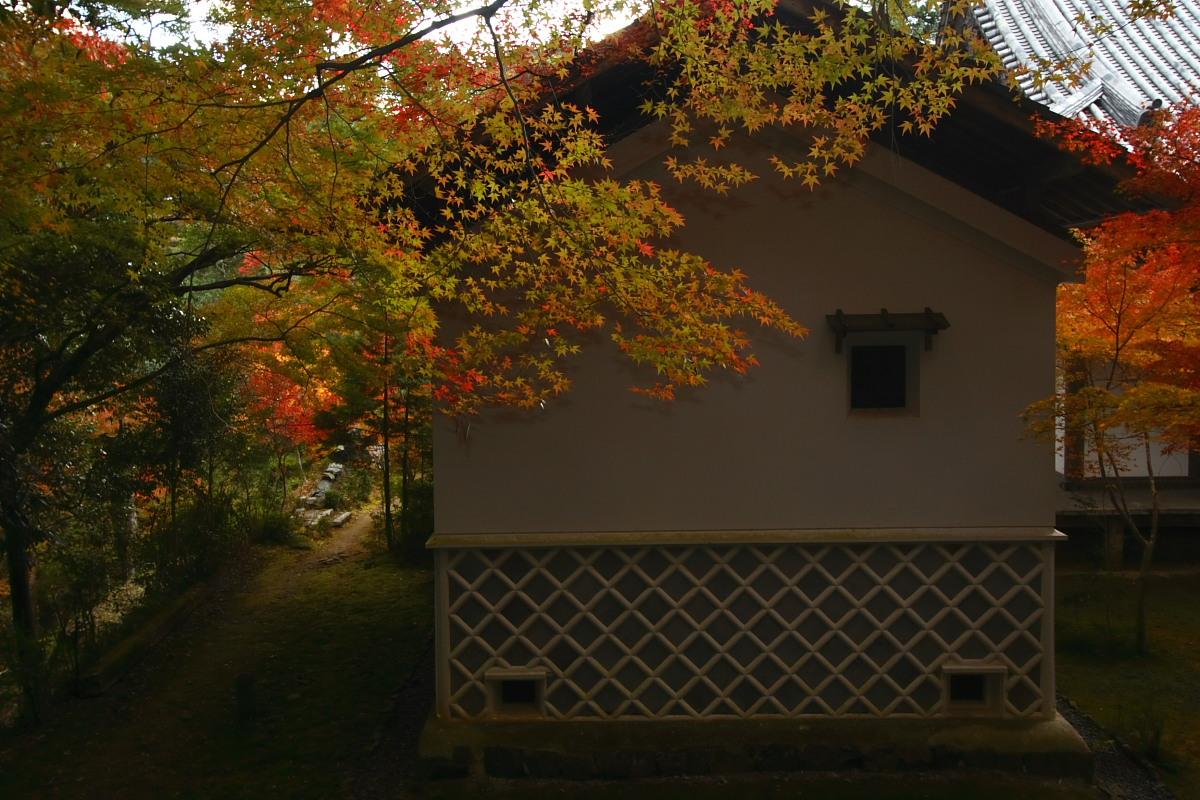 京都 高尾 <西明寺> 紅葉 3_f0021869_2037161.jpg