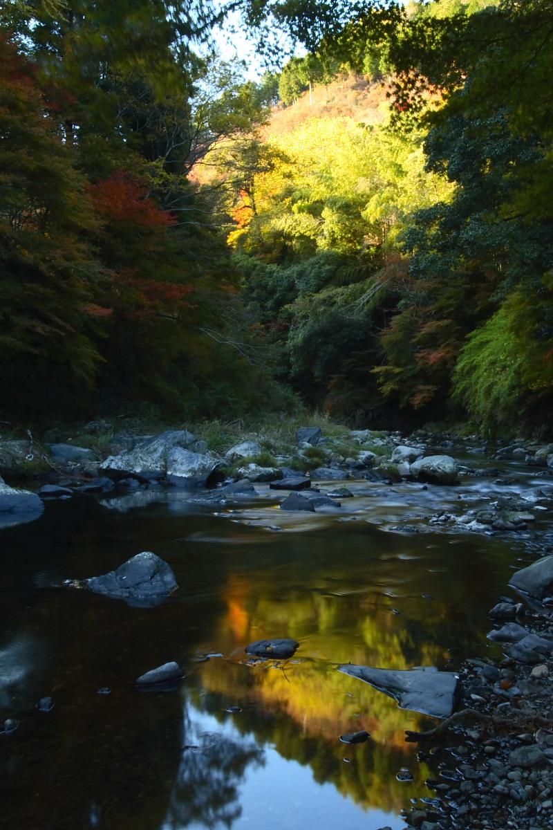京都 高尾 <西明寺> 紅葉 3_f0021869_20514289.jpg