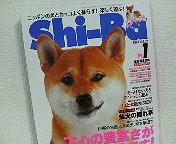 アトリエKotori広報部からのお知らせ_b0011075_15242238.jpg
