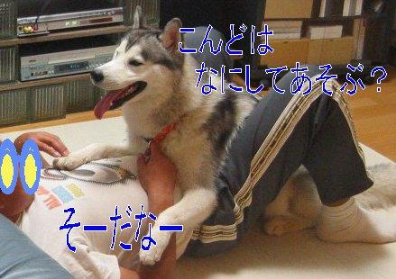 f0112407_234118100.jpg
