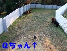 f0077931_23164726.jpg