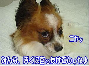 f0011845_121474.jpg