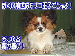 f0011845_1404797.jpg