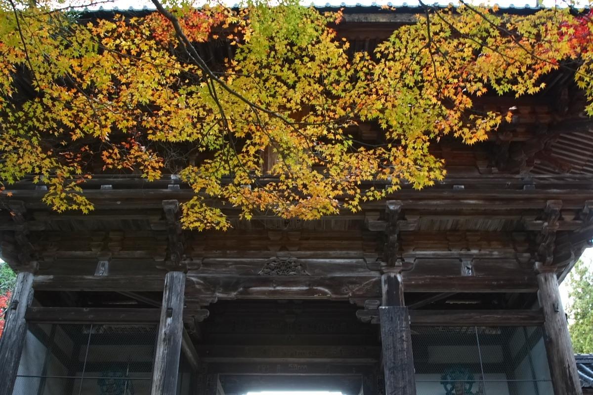 京都 高尾 <神護寺> 紅葉 _f0021869_21335238.jpg