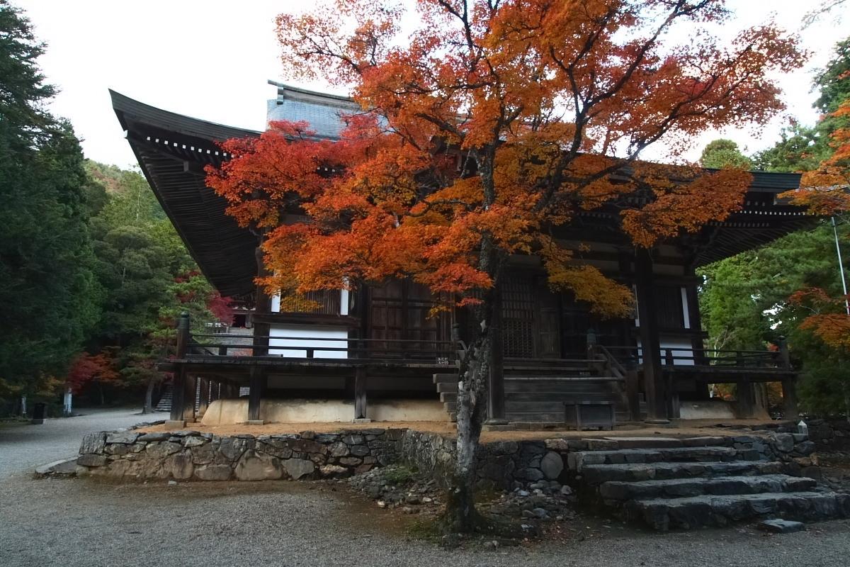 京都 高尾 <神護寺> 紅葉 _f0021869_2136420.jpg