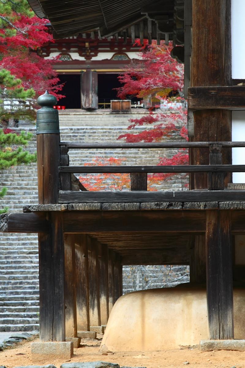 京都 高尾 <神護寺> 紅葉 _f0021869_2142696.jpg