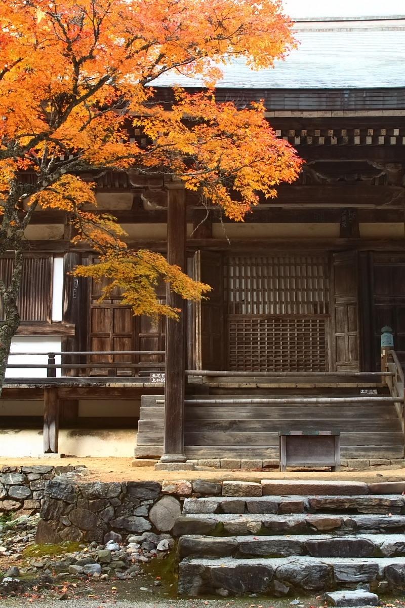 京都 高尾 <神護寺> 紅葉 _f0021869_21441075.jpg