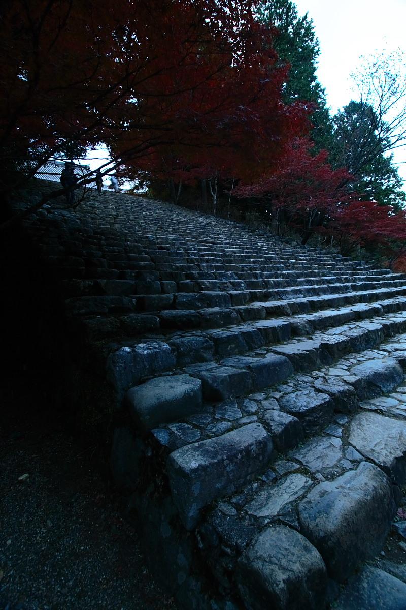 京都 高尾 <神護寺> 紅葉 _f0021869_21524499.jpg