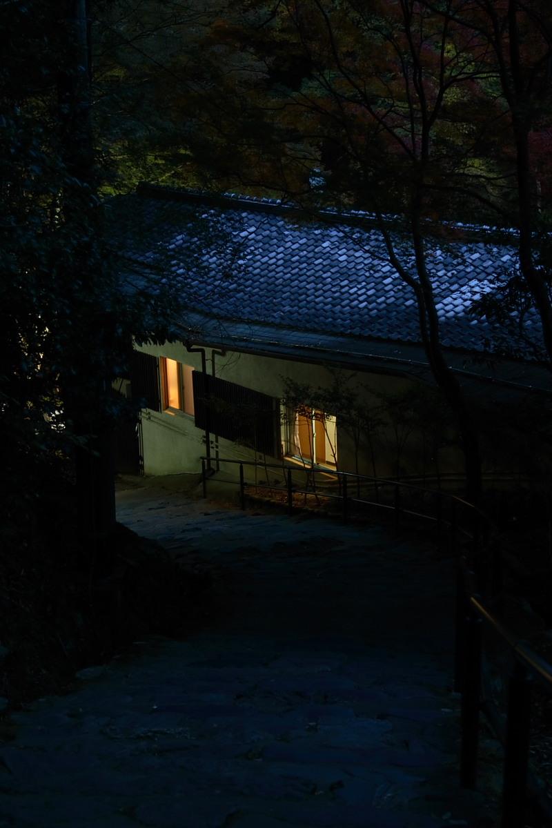 京都 高尾 <神護寺> 紅葉 _f0021869_21533610.jpg