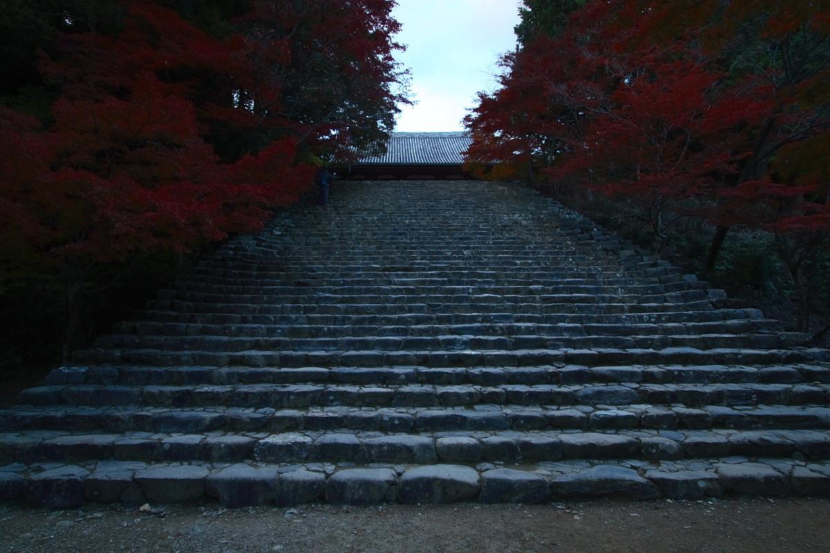 京都 高尾 <神護寺> 紅葉 _f0021869_21552186.jpg