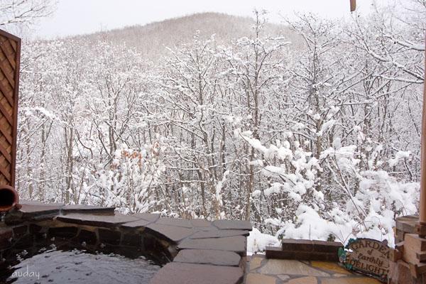 雪、いよいよ_c0048494_152338.jpg
