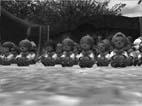 愛のケルベロス編(LAUGHTER MANIA2006レポート)-別れは薔薇の残香- _d0039216_23145355.jpg