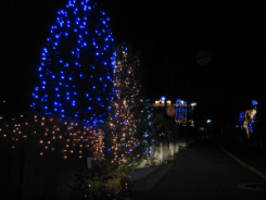 青色発光度を使ったイルミネーション。今年はこれが流行のようです。