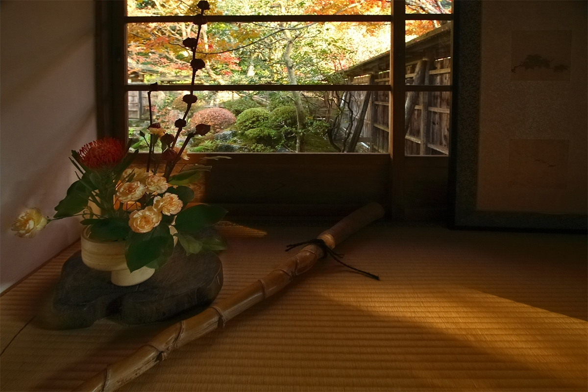 京都 大原 <宝泉院> 紅葉 _f0021869_10302037.jpg