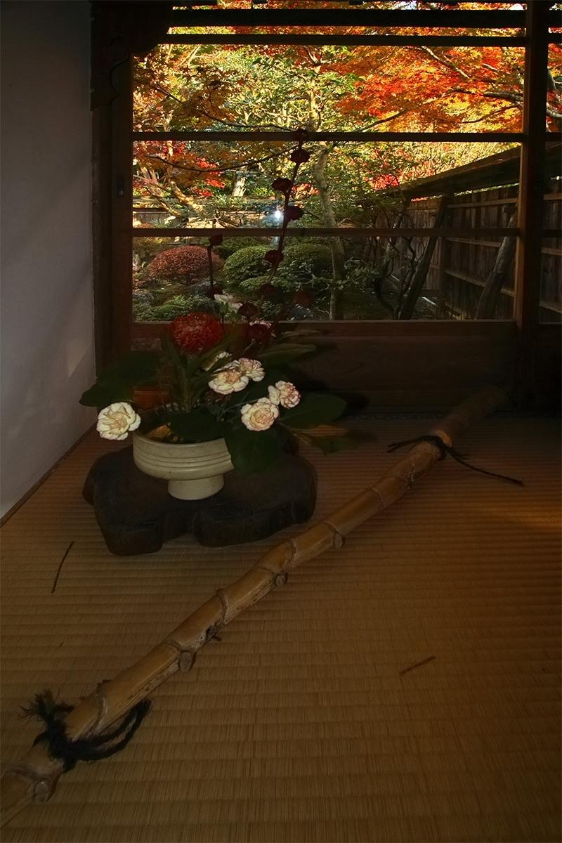 京都 大原 <宝泉院> 紅葉 _f0021869_10354970.jpg