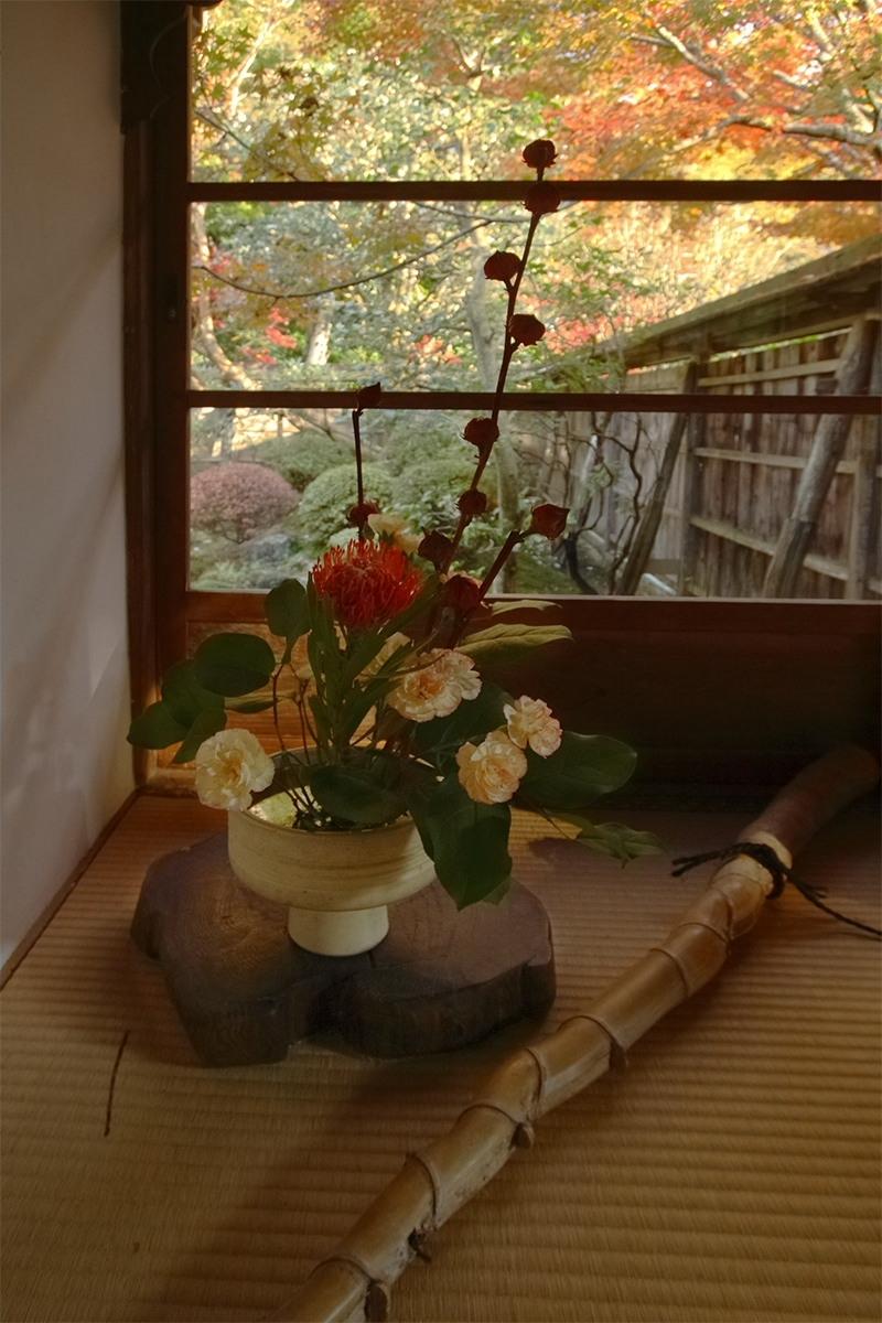 京都 大原 <宝泉院> 紅葉 _f0021869_1036690.jpg