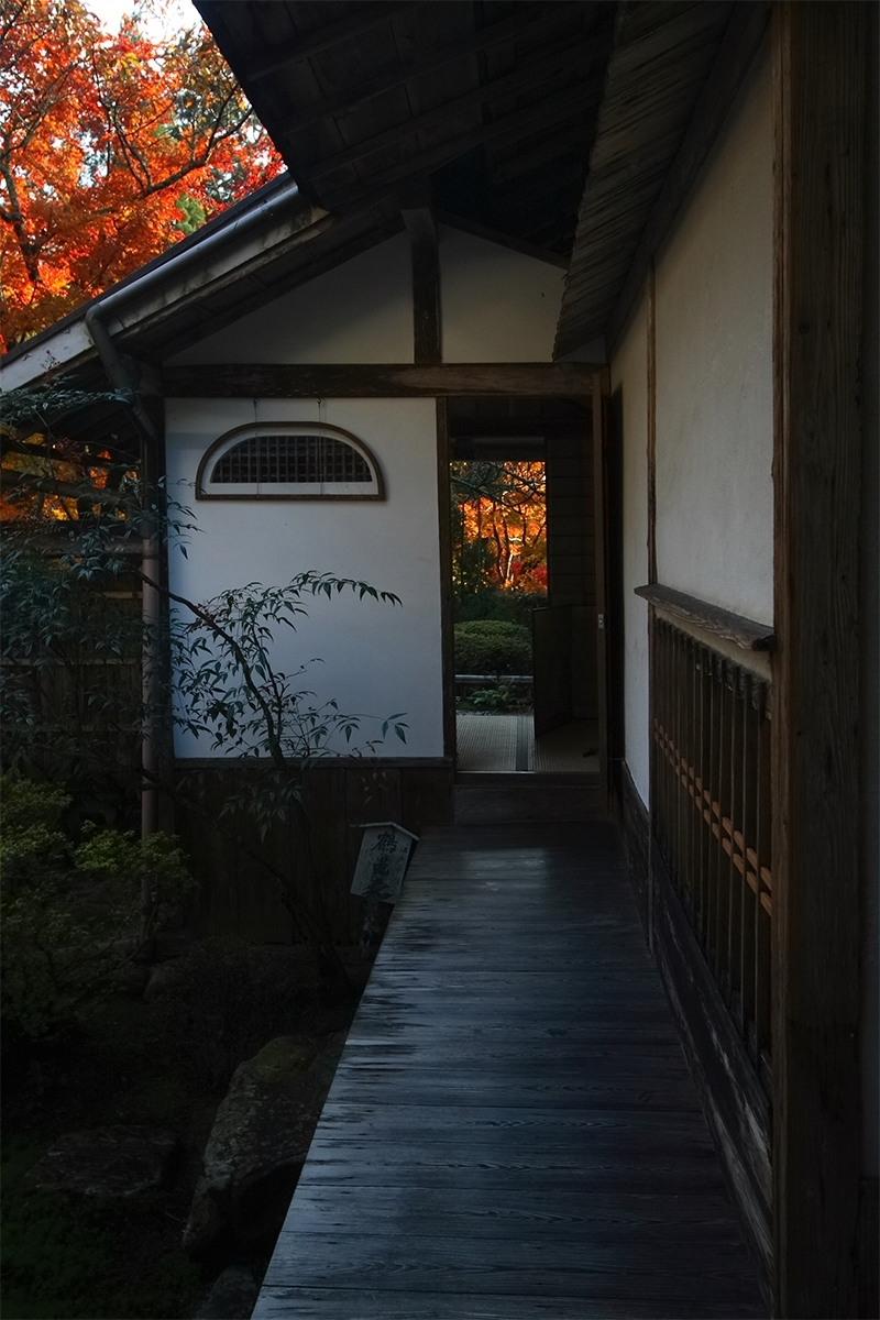 京都 大原 <宝泉院> 紅葉 _f0021869_104058.jpg