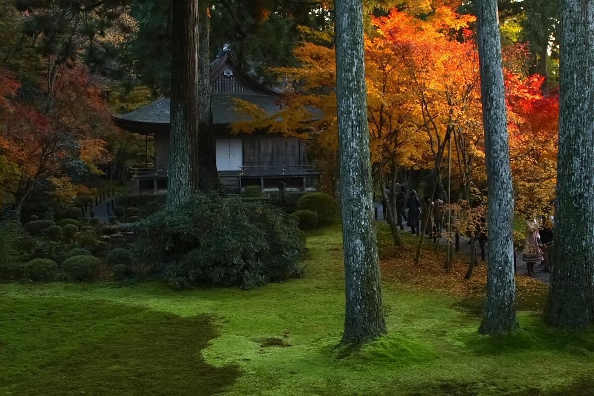 京都 大原 <三千院> 紅葉 2_f0021869_12311755.jpg
