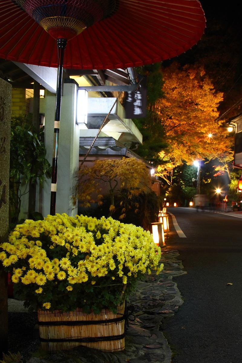 京都 貴船 <もみじ灯篭> 紅葉 1_f0021869_13255313.jpg