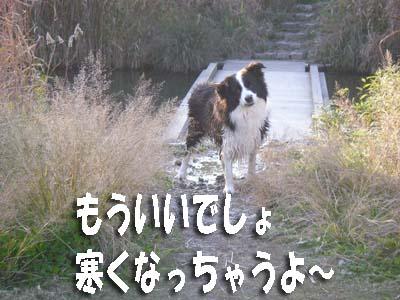 f0114893_20575553.jpg