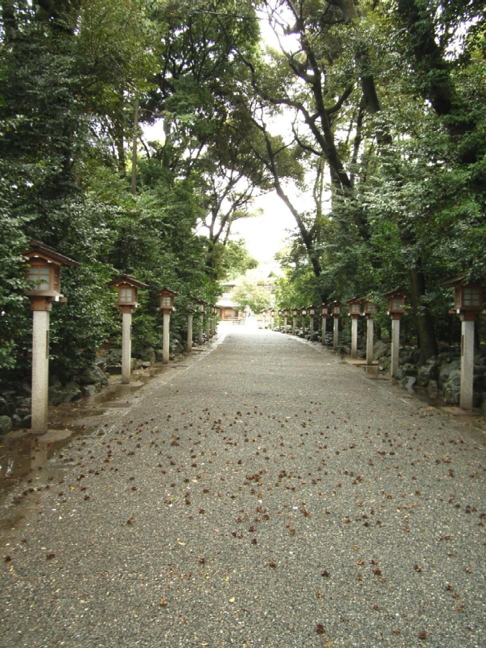 寒川神社_d0091021_181775.jpg