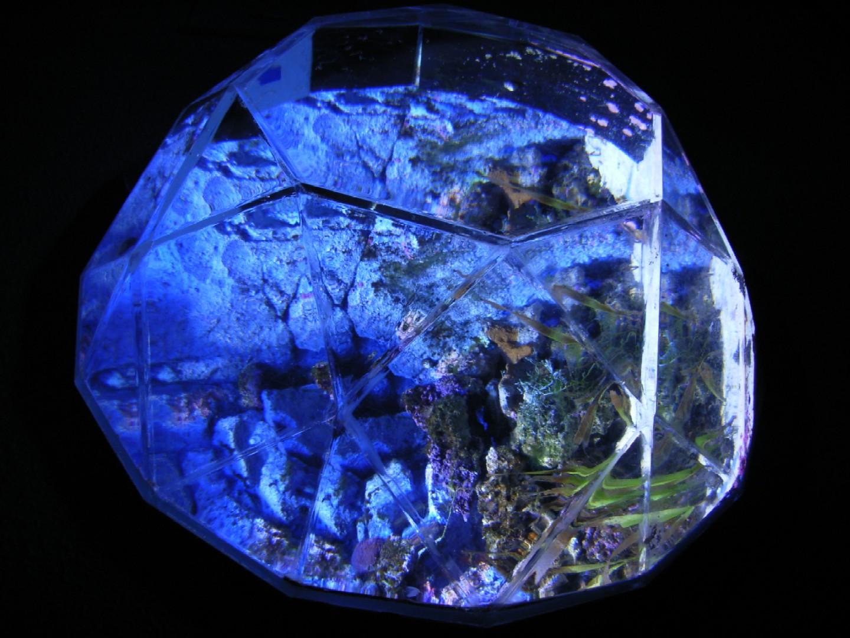 サンシャイン水族館_d0091021_2323643.jpg