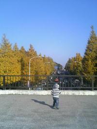 f0079249_2025557.jpg