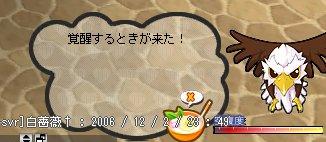 b0069074_1454250.jpg