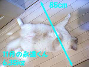 f0014893_20103622.jpg