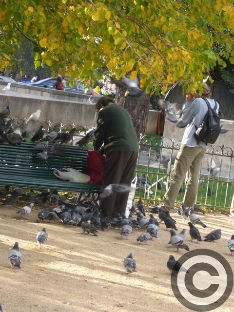 ■街角の人々(パリ)_a0008105_1171678.jpg
