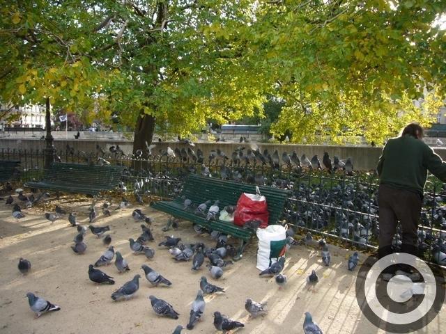 ■街角の人々(パリ)_a0008105_1173431.jpg