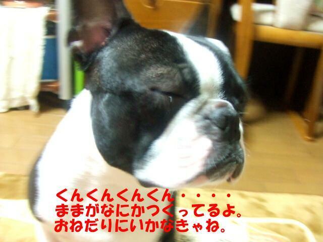 f0059334_9471137.jpg
