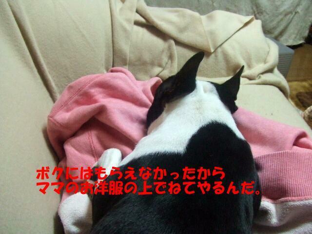 f0059334_9524226.jpg