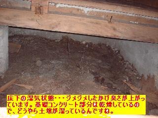 f0031037_203553.jpg
