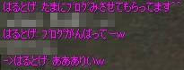 f0057350_2064560.jpg