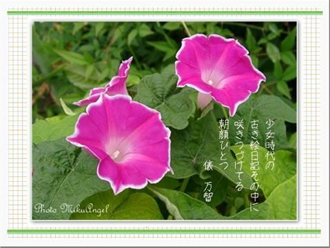 e0013417_142087.jpg
