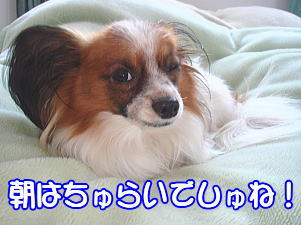 f0011845_024026.jpg